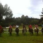 curso treinamento de equinos. 3jpg